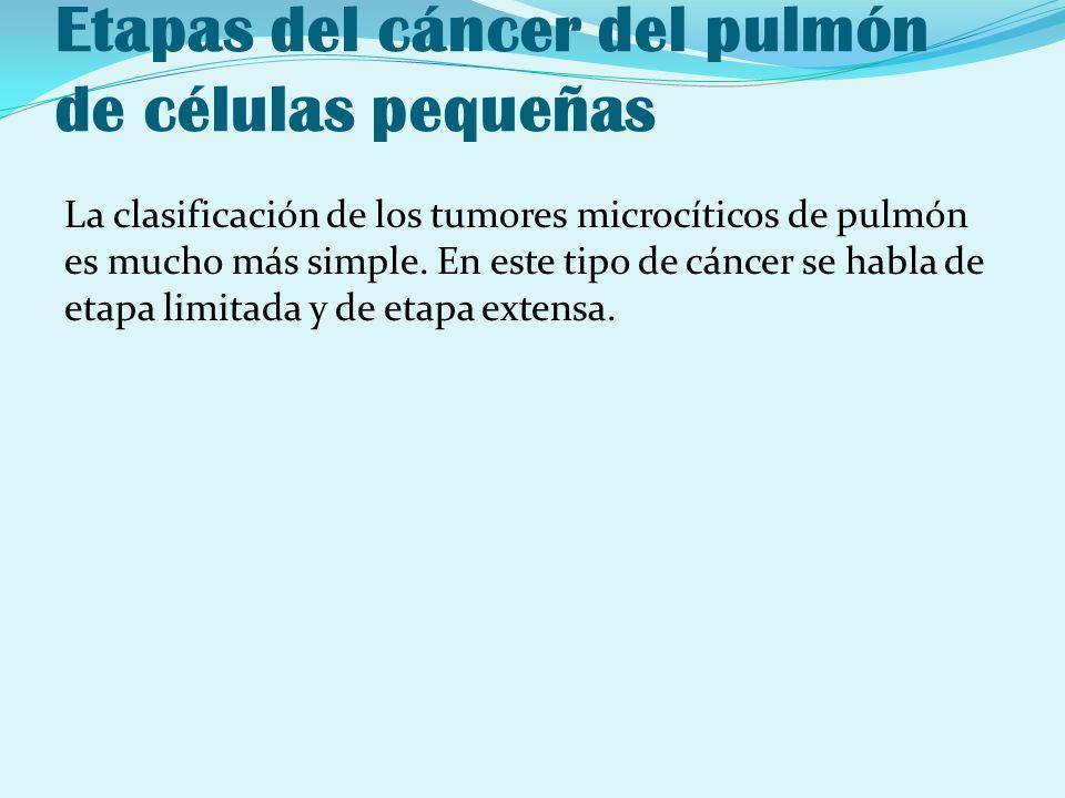Etapas del cáncer del pulmón de células pequeñas La clasificación de los tumores microcíticos de pulmón es mucho más simple. En este tipo de cáncer se