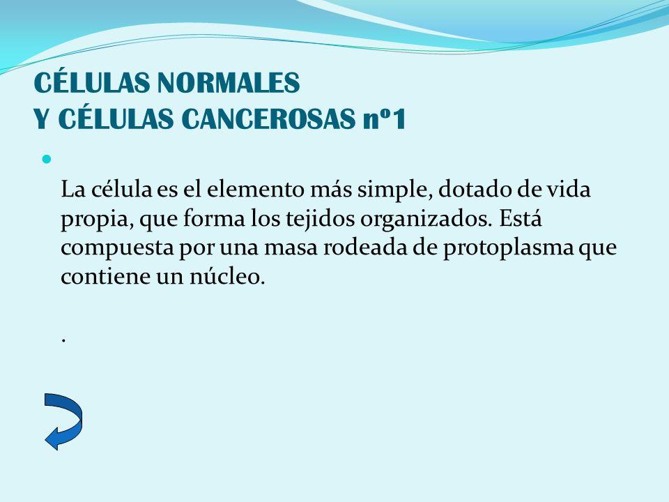 CÉLULAS NORMALES Y CÉLULAS CANCEROSAS nº1 La célula es el elemento más simple, dotado de vida propia, que forma los tejidos organizados. Está compuest