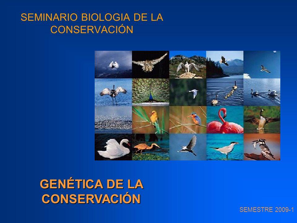 SEMINARIO BIOLOGIA DE LA CONSERVACIÓN SEMESTRE 2009-1 GENÉTICA DE LA CONSERVACIÓN