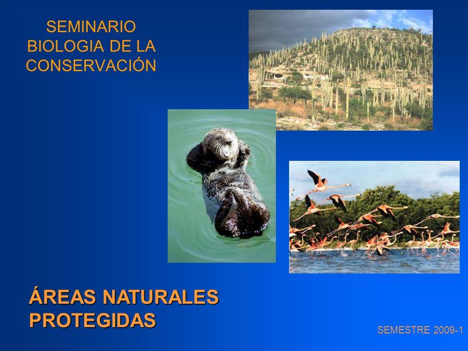 ÁREAS PROTEGIDAS Protección de hábitats = manera más efectiva de conservar la biodiversidad Área protegida: extensión de tierras y/o cuerpos de agua o mares dedicados a la protección y mantenimiento de la diversidad biológica, así como de los recursos naturales y culturales asociados.