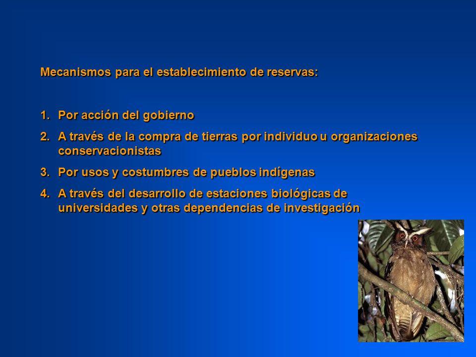 Pasos para el establecimiento de una reserva: 1.Identificar a las especies y comunidades biológicas con la prioridad de conservación más alta 2.Determinar las áreas de cada país que deben protegerse para cumplir con metas de conservación 3.Ligar a las nuevas áreas protegidas con redes de reservas existentes, usando técnicas como análisis GAP
