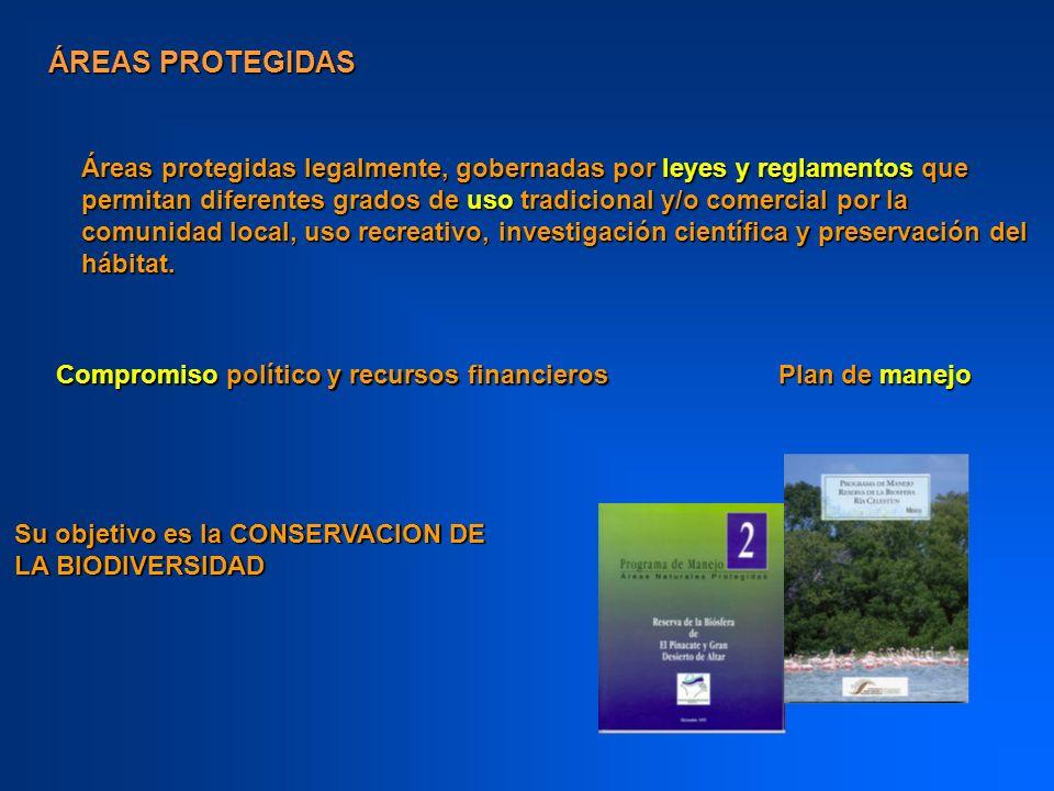Son el núcleo de los esfuerzos para la protección de las especies en riesgo y se han convertido en proveedores esenciales de servicios ambientales y recursos biológicos.