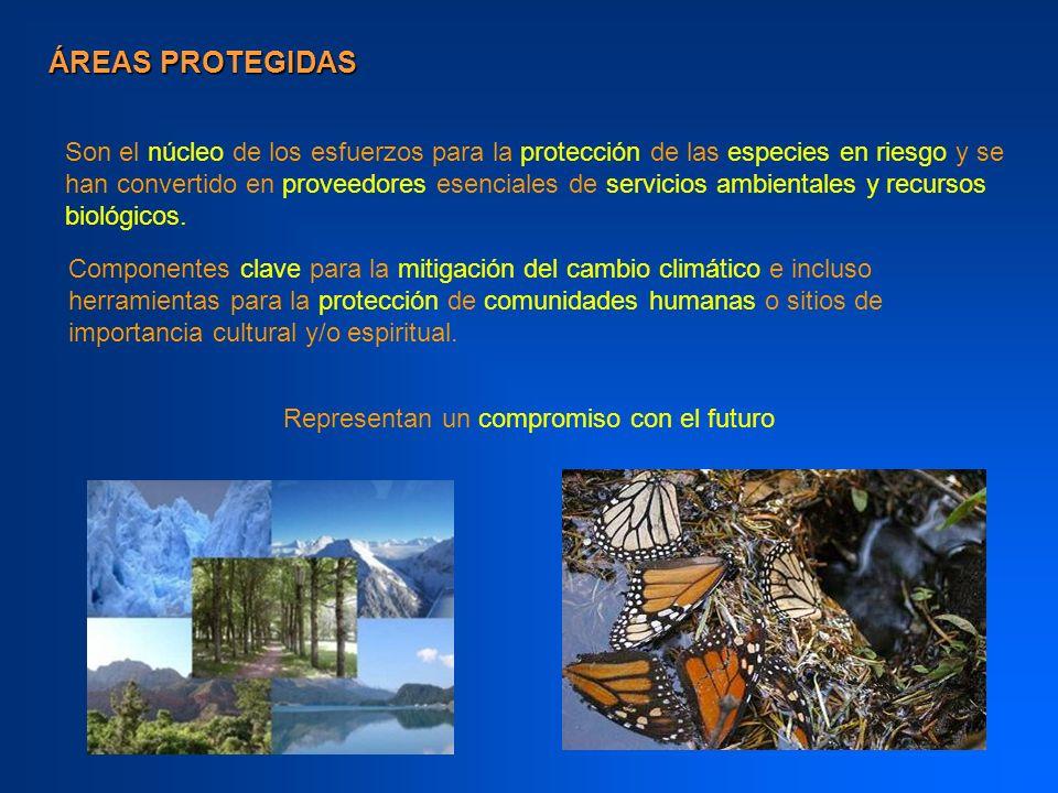 Elemento fundamental de todas las estrategias nacionales e internacionales de conservación.
