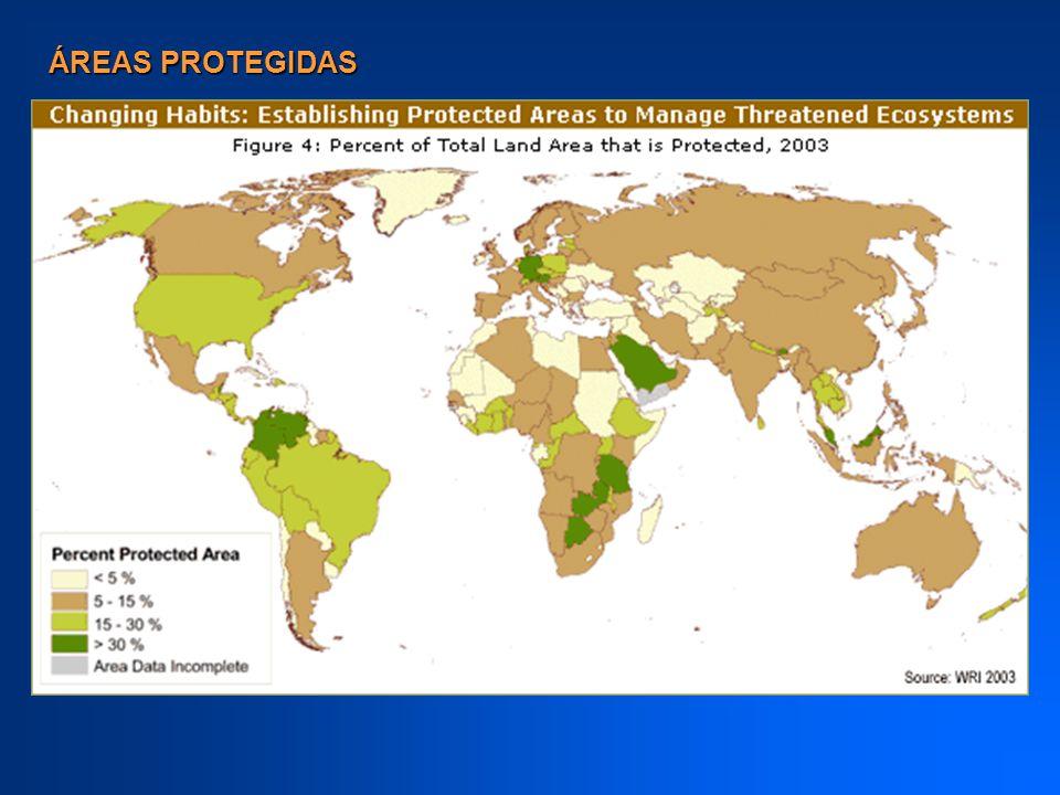Criterios de la IUCN Las áreas se dividen con base en el tipo de manejo que tienen Áreas protegidas más grandes y menos perturbadas proveen espacio para los procesos evolutivos, así como para la adaptación y la restauración de hábitats.