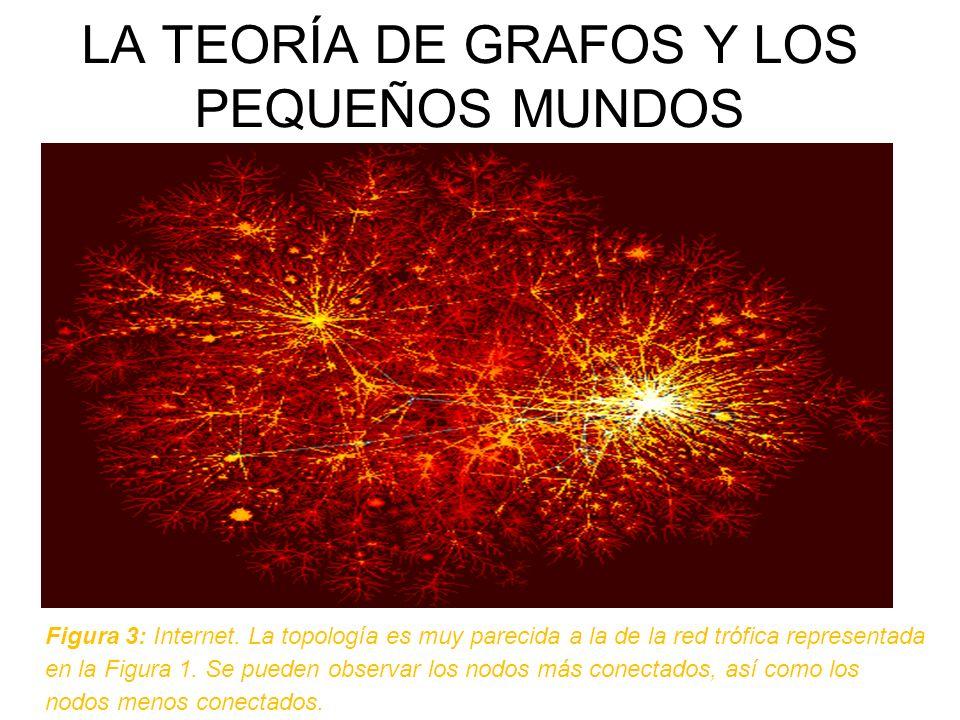 LA TEORÍA DE GRAFOS Y LOS PEQUEÑOS MUNDOS Figura 3: Internet. La topología es muy parecida a la de la red trófica representada en la Figura 1. Se pued