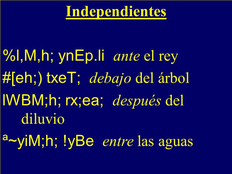 Independientes %l,M,h; ynEp.li ante el rey #[eh;) txeT; debajo del árbol lWBM;h; rx;ea; después del diluvio ª~yiM;h; !yBe entre las aguas