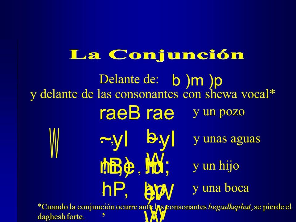 Delante de: ~yI m;), y unas aguas !Be, y un hijo hP,, ~yI m; )W !b e W hp,W y delante de las consonantes con shewa vocal* raeB., rae b. W y un pozo y