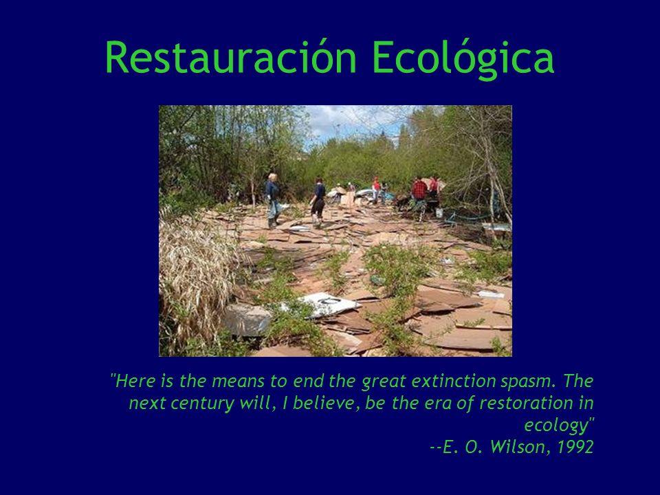 Para información detallada sobre la restauración de arroyos y zonas ribereñas consulte la página del Departamento de Agricultura de los Estados Unidos de América: http://www.usda.gov/http://www.usda.gov/ Otros contactos Society for Ecological Restoration (SER): http://www.ser.org/ http://www.ser.org/ Society of Wetland Scientists: http://depts.washington.edu/uwren/Links.htm http://depts.washington.edu/uwren/Links.htm Texas Society for Ecological Restoration: http://www.cepunt.edu/sertex.html http://www.cepunt.edu/sertex.html
