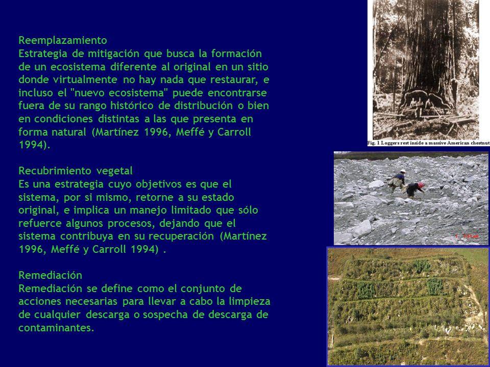 Reemplazamiento Estrategia de mitigación que busca la formación de un ecosistema diferente al original en un sitio donde virtualmente no hay nada que