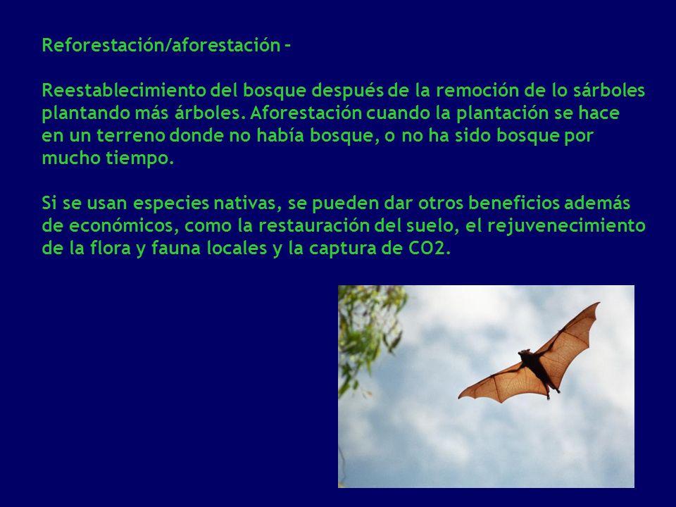Reforestación/aforestación – Reestablecimiento del bosque después de la remoción de lo sárboles plantando más árboles. Aforestación cuando la plantaci