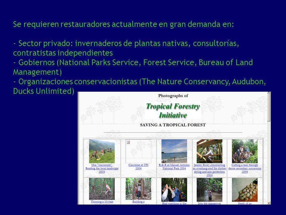 Se requieren restauradores actualmente en gran demanda en: - Sector privado: invernaderos de plantas nativas, consultorías, contratistas independiente