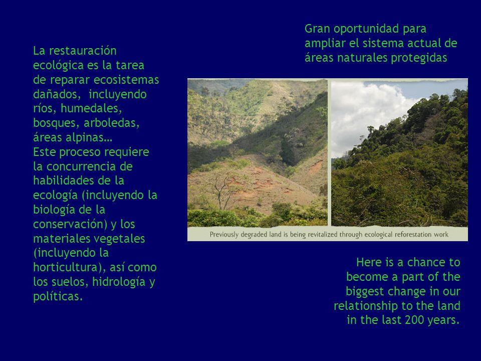 La restauración ecológica es la tarea de reparar ecosistemas dañados, incluyendo ríos, humedales, bosques, arboledas, áreas alpinas… Este proceso requ