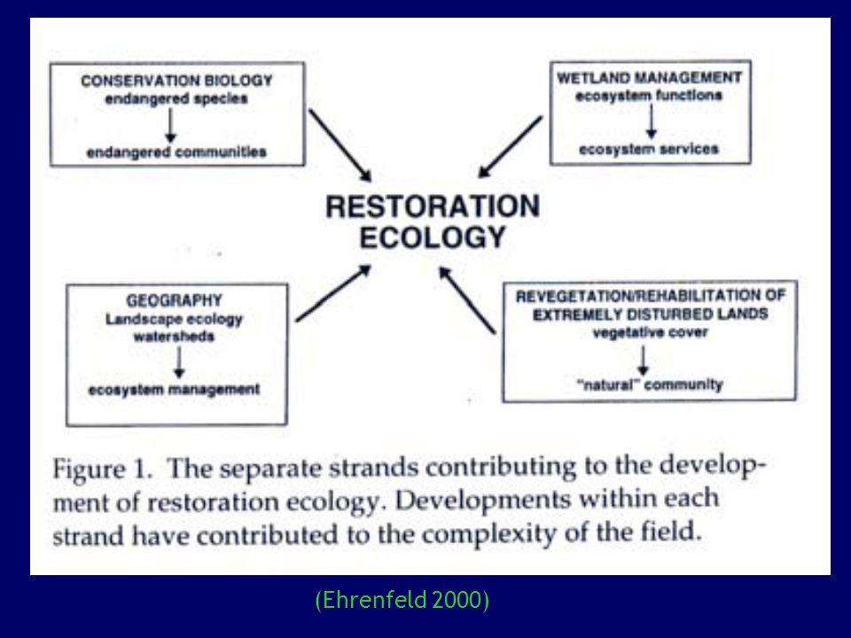 ¿Debemos restaurar los ecosistemas.