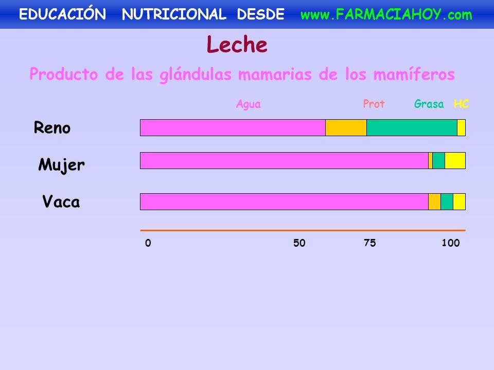Leche Producto de las glándulas mamarias de los mamíferos Reno Mujer Vaca Agua Prot Grasa HC 050 75100 EDUCACIÓN NUTRICIONAL DESDE www.FARMACIAHOY.com