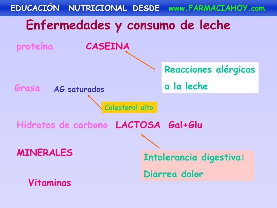 Enfermedades y consumo de leche proteínaCASEINA Grasa AG saturados MINERALES Vitaminas Hidratos de carbonoLACTOSA Gal+Glu Reacciones alérgicas a la le