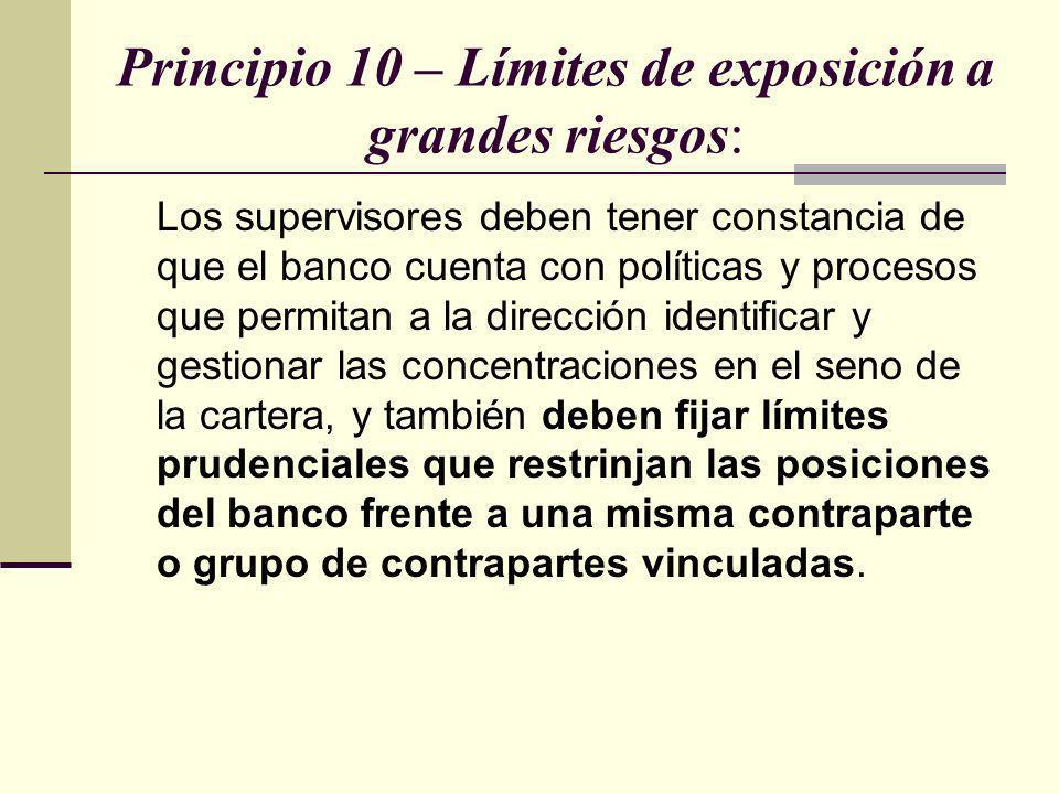 Principio 10 – Límites de exposición a grandes riesgos: Los supervisores deben tener constancia de que el banco cuenta con políticas y procesos que pe