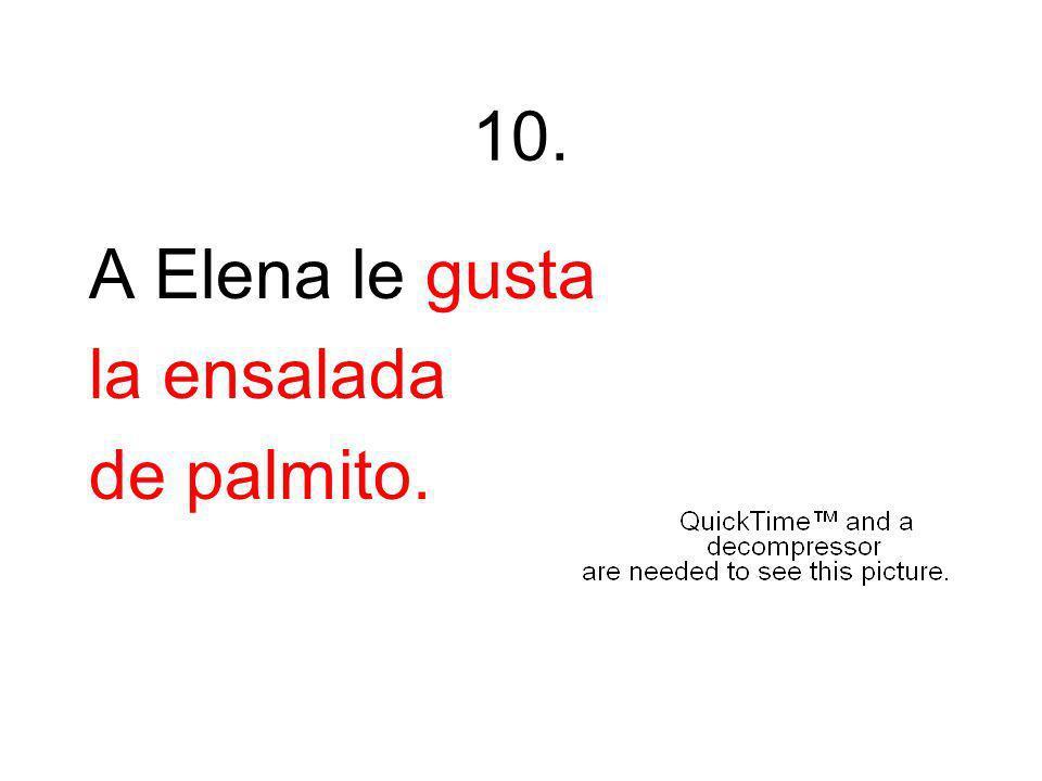 10. A Elena le gusta la ensalada de palmito.