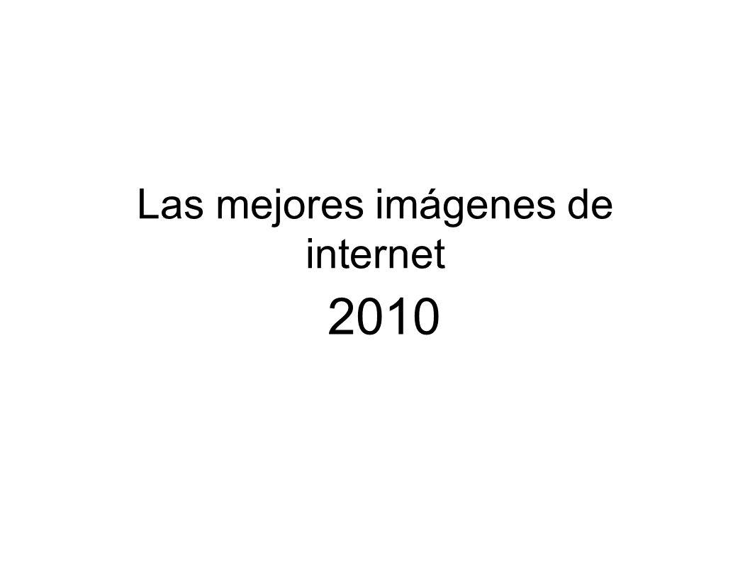 Las mejores imágenes de internet 2010
