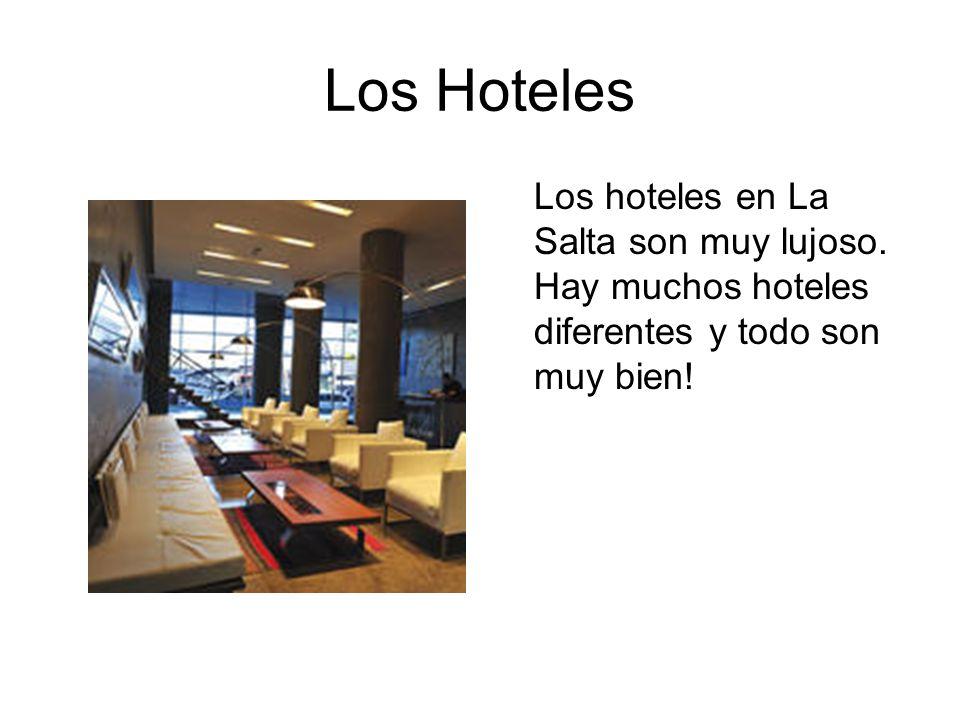 Los Hoteles Los hoteles en La Salta son muy lujoso.