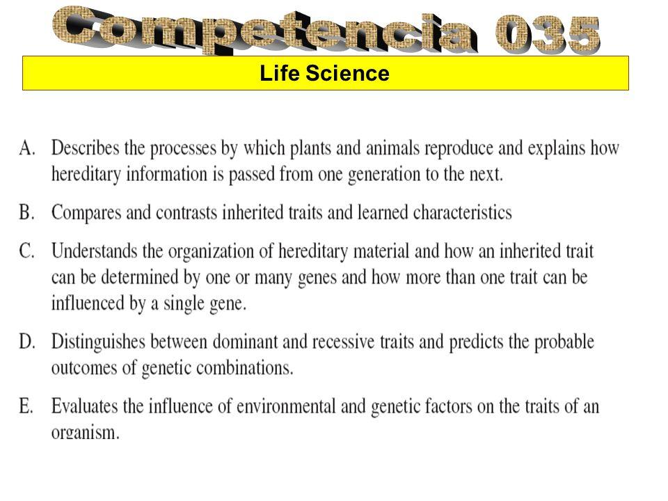 Animal Reproduction Como parte del ciclo de vida, los organismo vivos pasan a través del ciclo de la reproducción en donde los animales tiene n a sus descendientes.