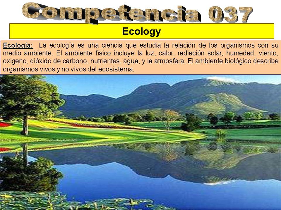 Ecosystem Ecosistema: Ecosistema: Hay tres componente principales de todo ecosistema: Productores): Productores): Los productores son las plantas verdes que producen oxigeno y almacena energía química para los consumidores.