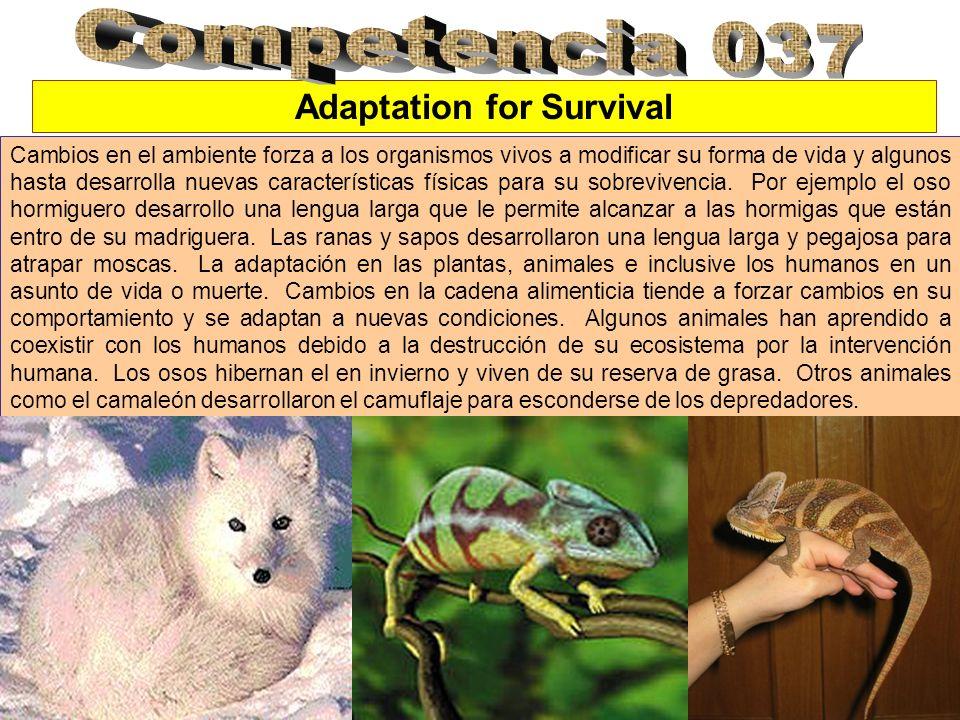 Adaptation for Survival Cambios en el ambiente forza a los organismos vivos a modificar su forma de vida y algunos hasta desarrolla nuevas característ