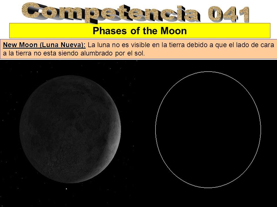 Phases of the Moon New Moon (Luna Nueva): New Moon (Luna Nueva): La luna no es visible en la tierra debido a que el lado de cara a la tierra no esta s