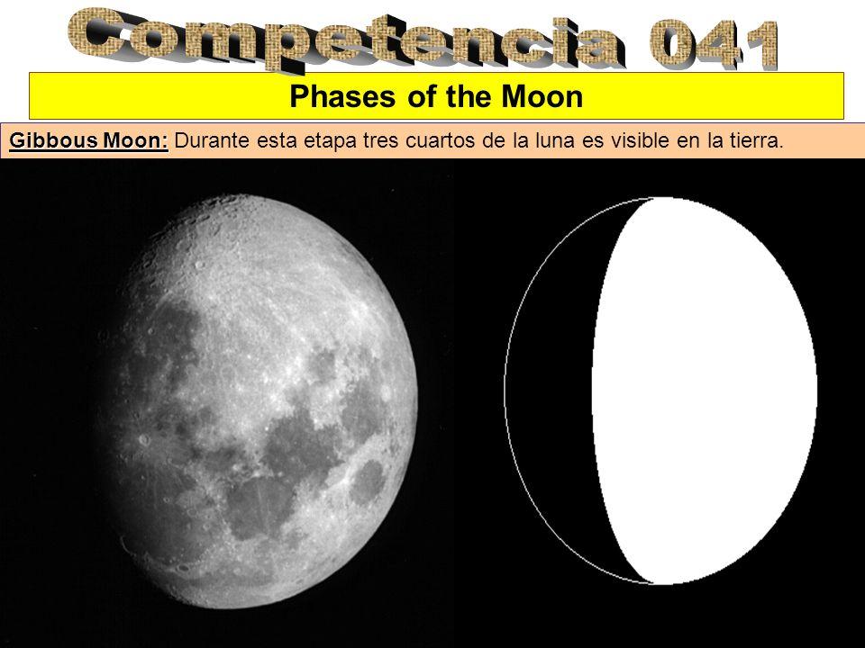 Phases of the Moon Gibbous Moon: Gibbous Moon: Durante esta etapa tres cuartos de la luna es visible en la tierra.