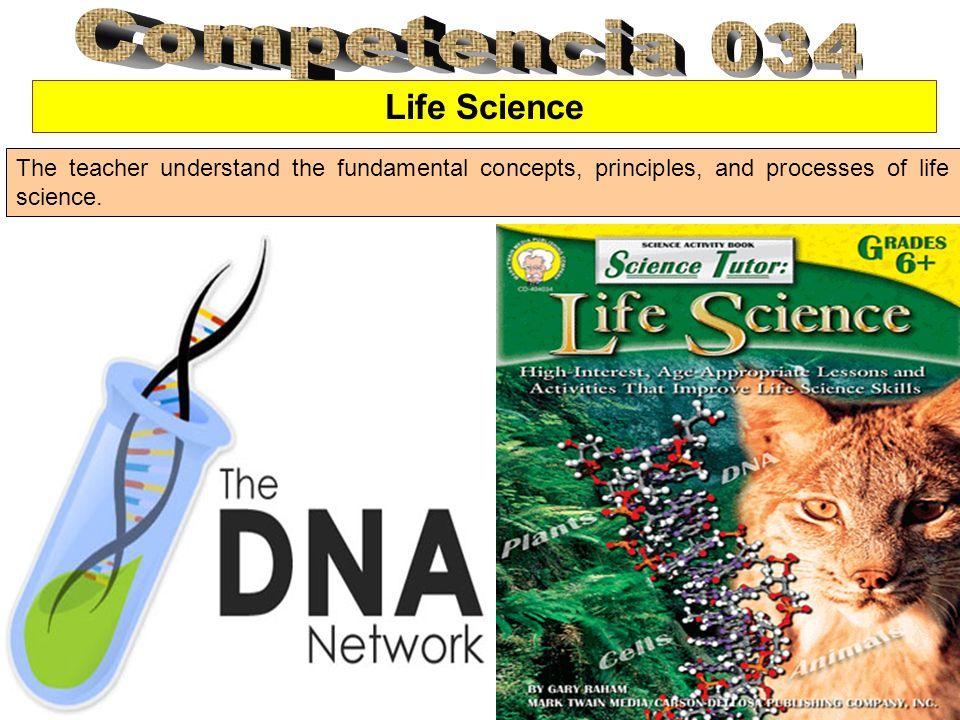 Cell System Las células son las unidades básicas de los organismos vivos y es la simple unidad viva de la vida.