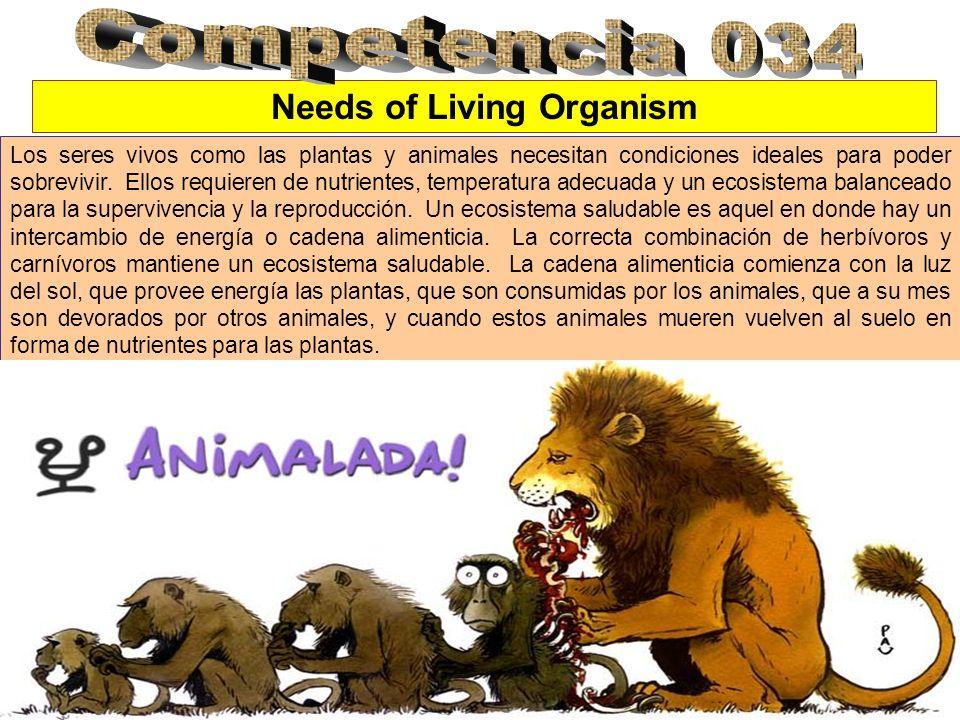 Needs of Living Organism Los seres vivos como las plantas y animales necesitan condiciones ideales para poder sobrevivir. Ellos requieren de nutriente