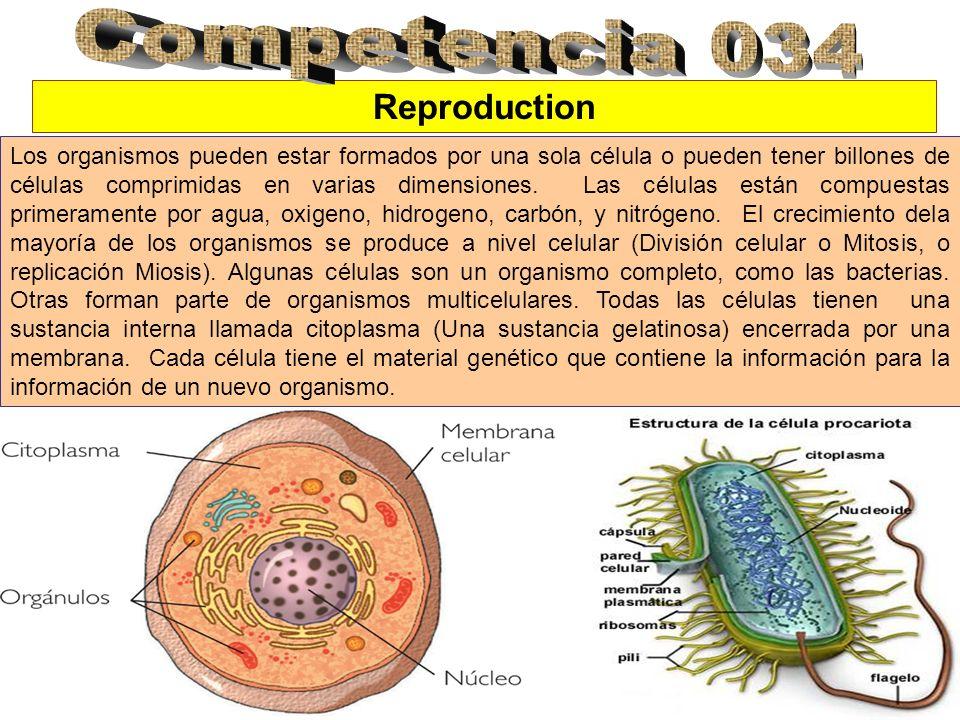 Reproduction Los organismos pueden estar formados por una sola célula o pueden tener billones de células comprimidas en varias dimensiones. Las célula