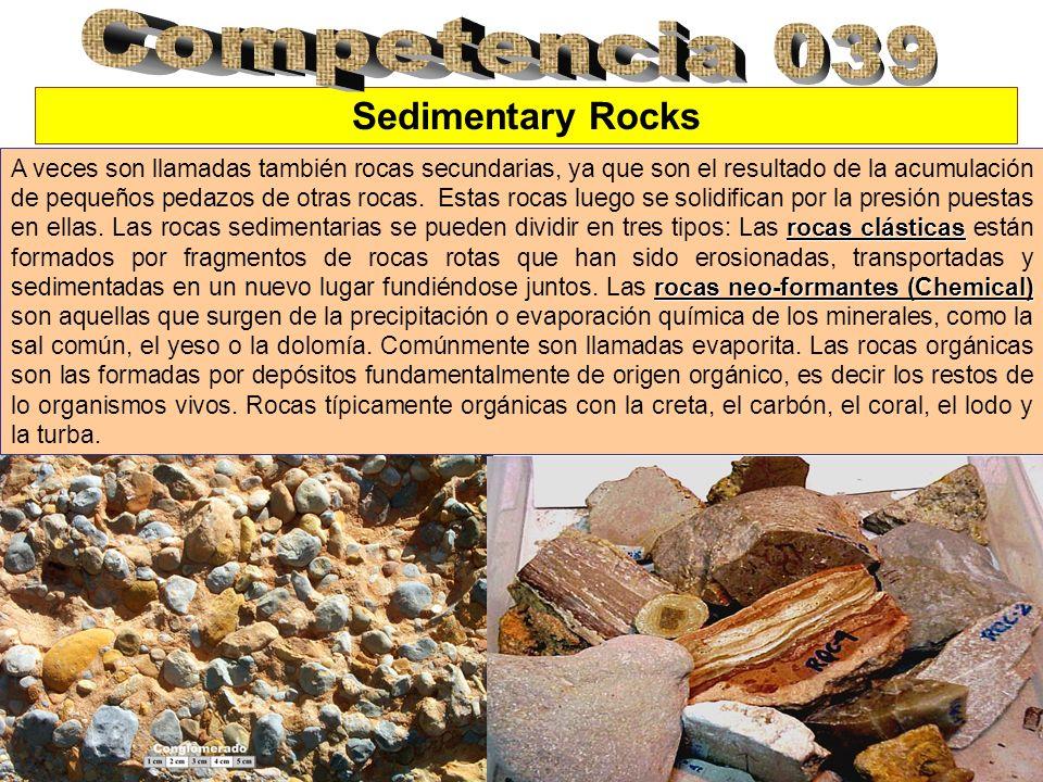 Sedimentary Rocks rocas clásticas rocas neo-formantes (Chemical) A veces son llamadas también rocas secundarias, ya que son el resultado de la acumula