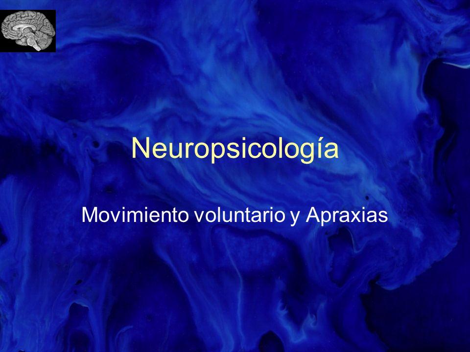 Neuropsicología Movimiento voluntario y Apraxias