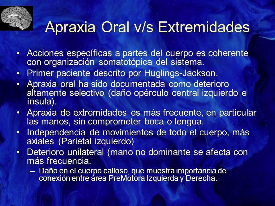 Apraxia Oral v/s Extremidades Acciones específicas a partes del cuerpo es coherente con organización somatotópica del sistema. Primer paciente descrit