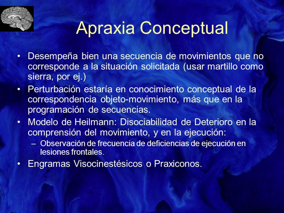 Apraxia Conceptual Desempeña bien una secuencia de movimientos que no corresponde a la situación solicitada (usar martillo como sierra, por ej.) Pertu