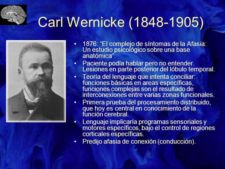Carl Wernicke (1848-1905) 1876: El complejo de síntomas de la Afasia: Un estudio psicológico sobre una base anatómica. Paciente podía hablar pero no e