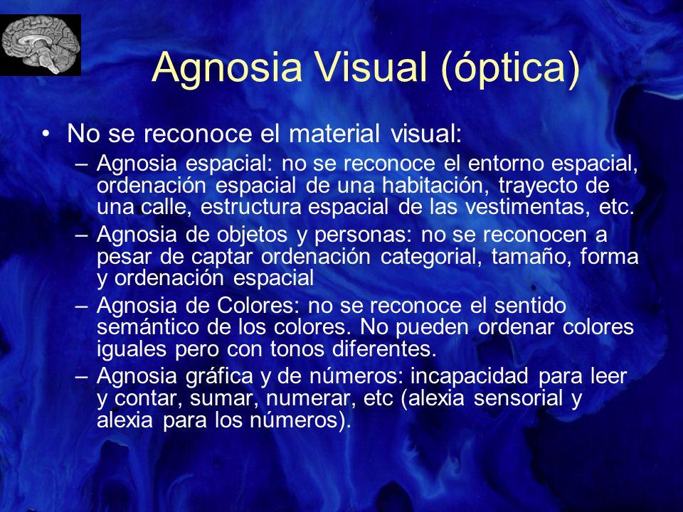 Agnosia Visual (óptica) No se reconoce el material visual: –Agnosia espacial: no se reconoce el entorno espacial, ordenación espacial de una habitació