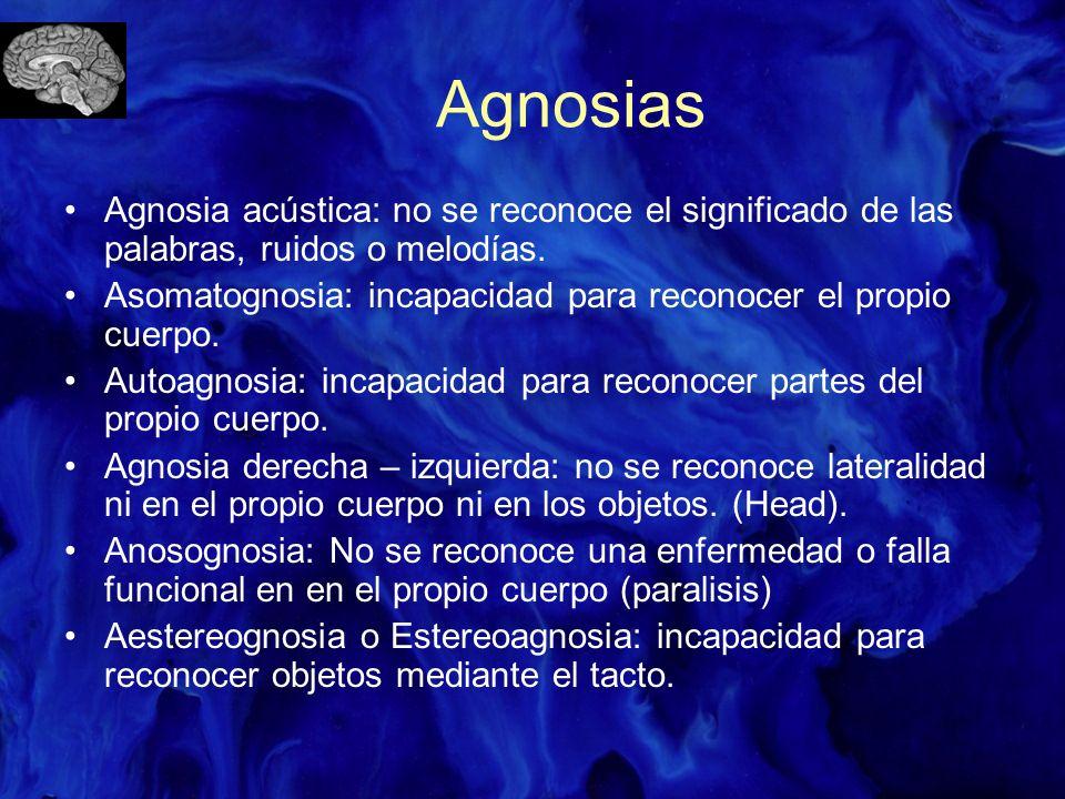 Agnosias Agnosia acústica: no se reconoce el significado de las palabras, ruidos o melodías. Asomatognosia: incapacidad para reconocer el propio cuerp