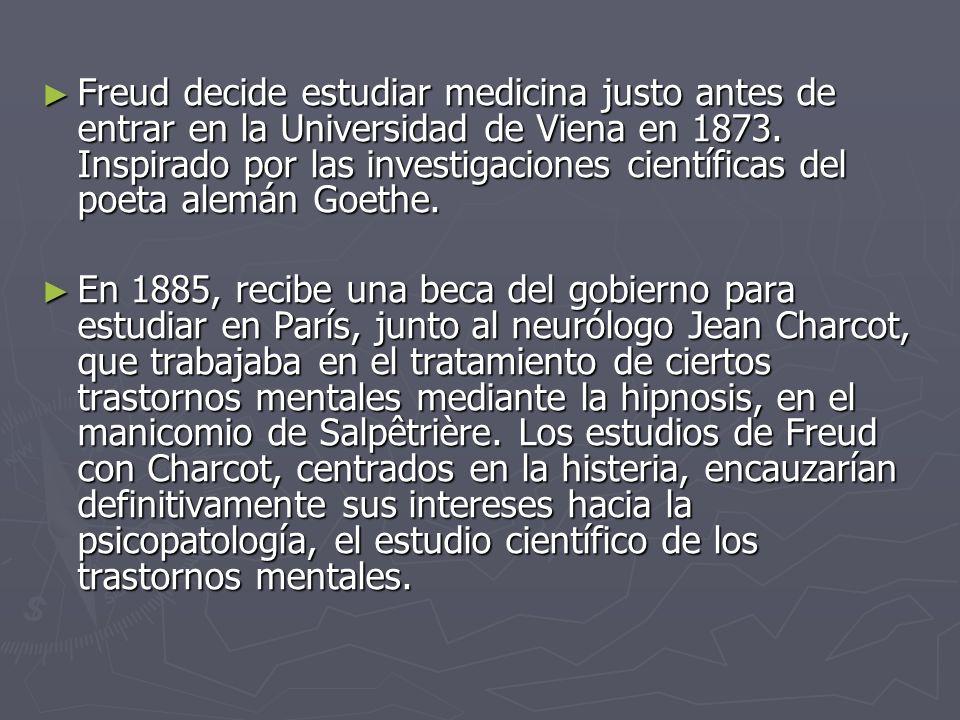 Freud decide estudiar medicina justo antes de entrar en la Universidad de Viena en 1873. Inspirado por las investigaciones científicas del poeta alemá