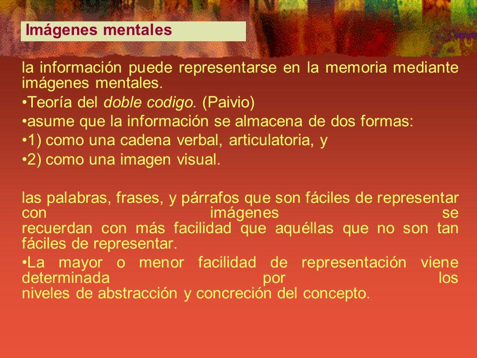 la información puede representarse en la memoria mediante imágenes mentales. Teoría del doble codigo. (Paivio) asume que la información se almacena de