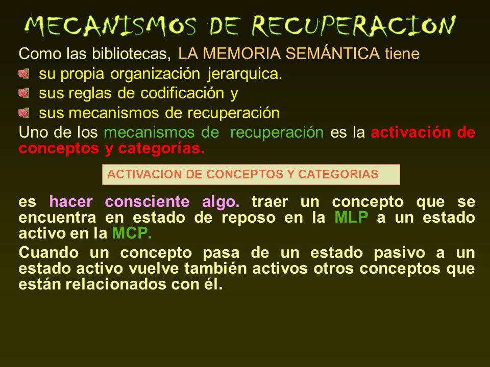 Como las bibliotecas, LA MEMORIA SEMÁNTICA tiene su propia organización jerarquica. sus reglas de codificación y sus mecanismos de recuperación Uno de