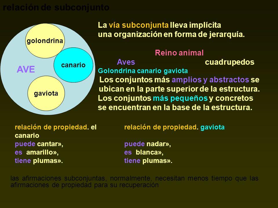 relación de subconjunto AVE golondrina canario gaviota La vía subconjunta lleva implícita una organización en forma de jerarquía. Reino animal Aves cu