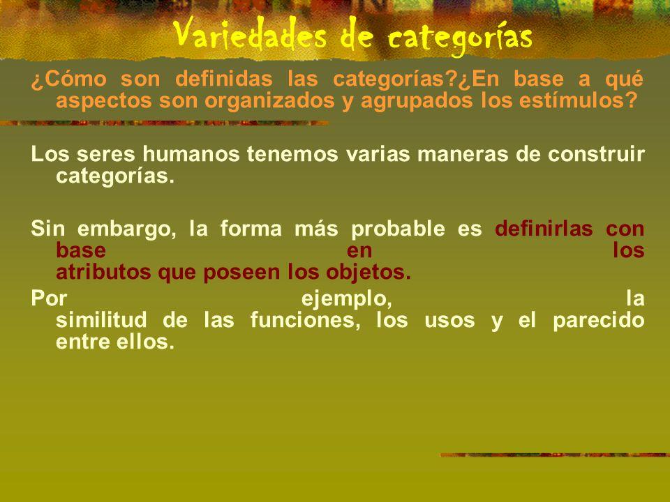 ¿Cómo son definidas las categorías ¿En base a qué aspectos son organizados y agrupados los estímulos.