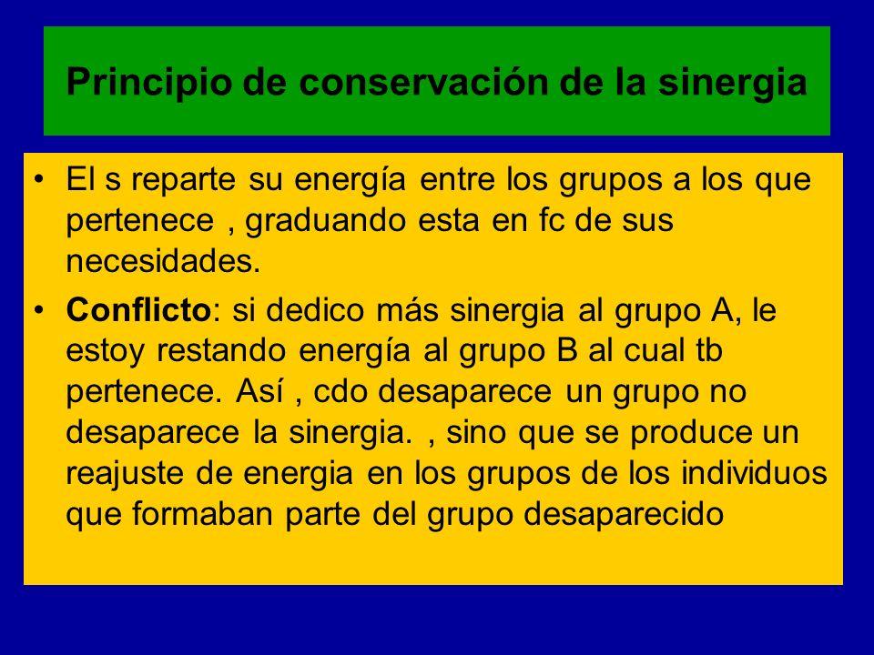 Principio de conservación de la sinergia El s reparte su energía entre los grupos a los que pertenece, graduando esta en fc de sus necesidades. Confli