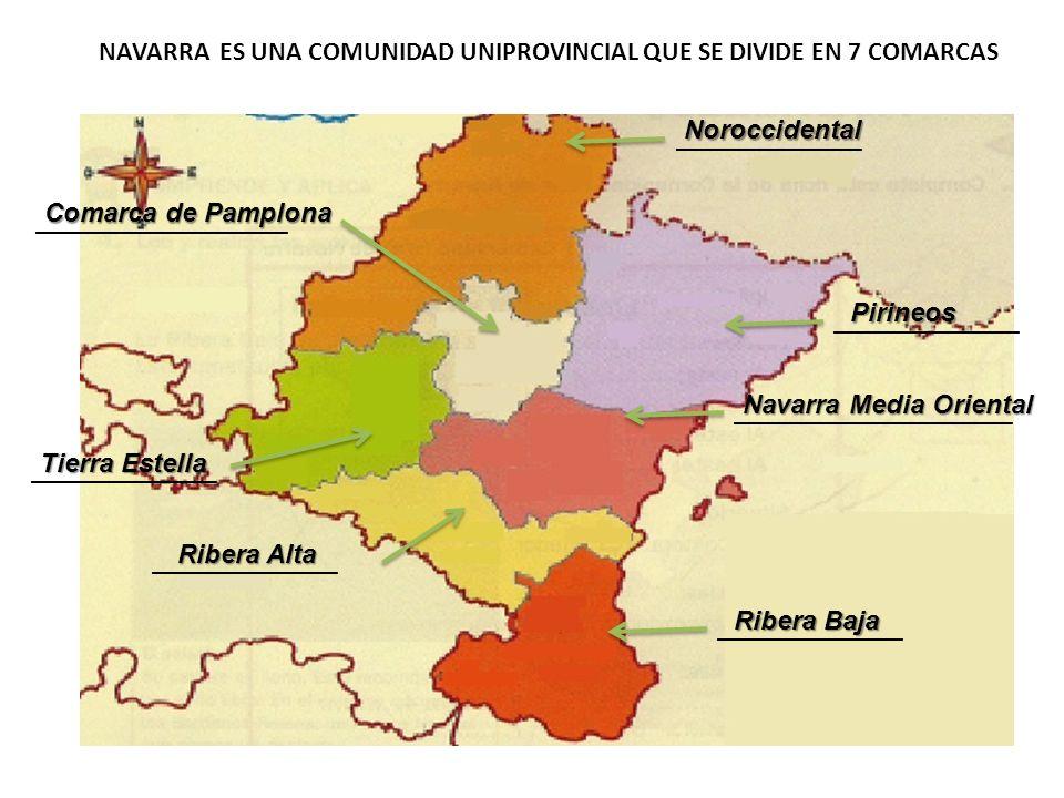 ______________Noroccidental Pirineos _____________________ Navarra Media Oriental ______________ Ribera Baja ___________________ Comarca de Pamplona _