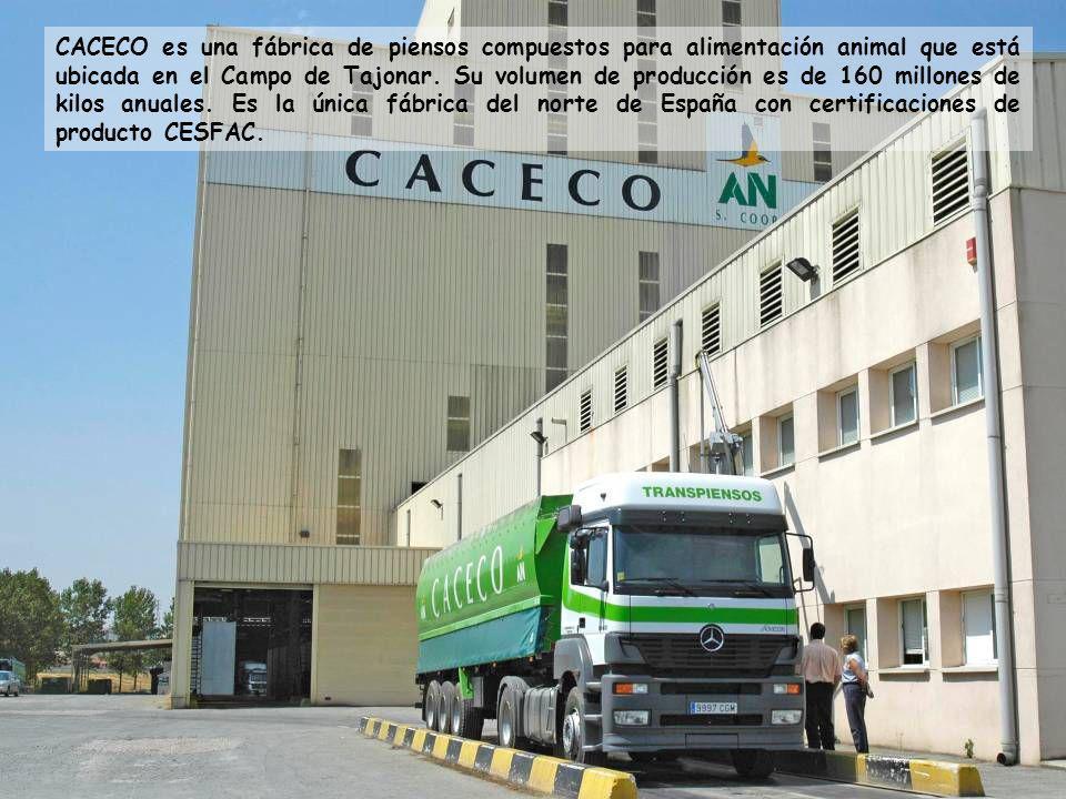 CACECO es una fábrica de piensos compuestos para alimentación animal que está ubicada en el Campo de Tajonar. Su volumen de producción es de 160 millo