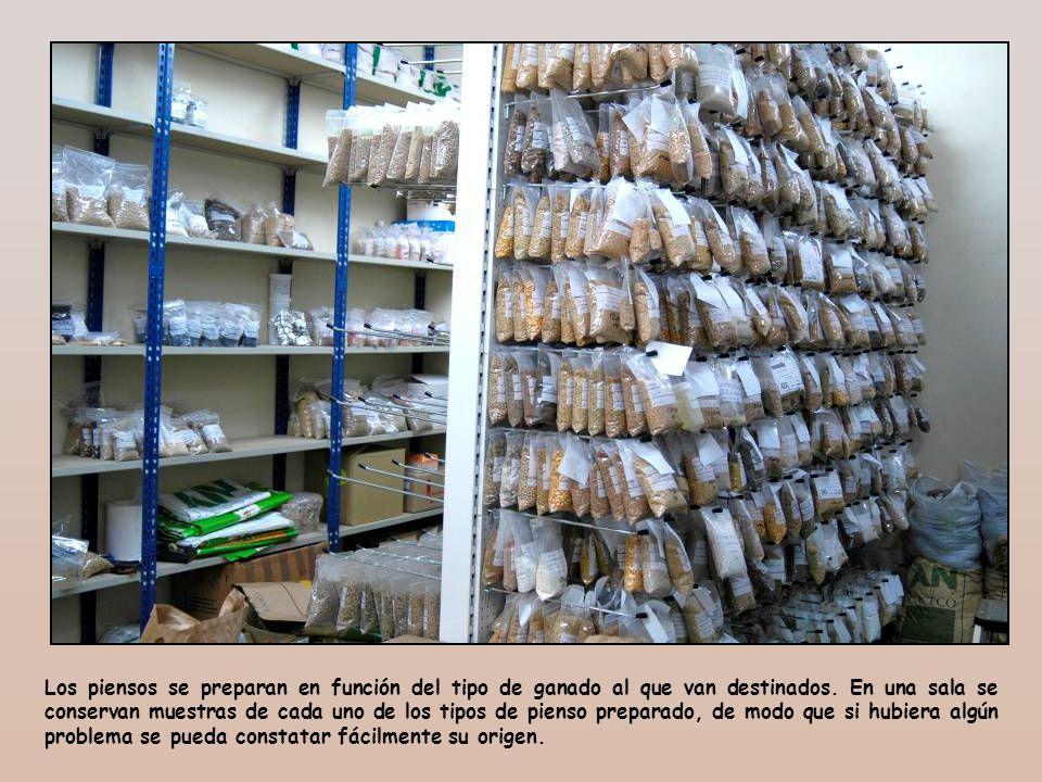 Las partidas de piensos envasadas se depositan en un almacén para enviarlas a su destino.