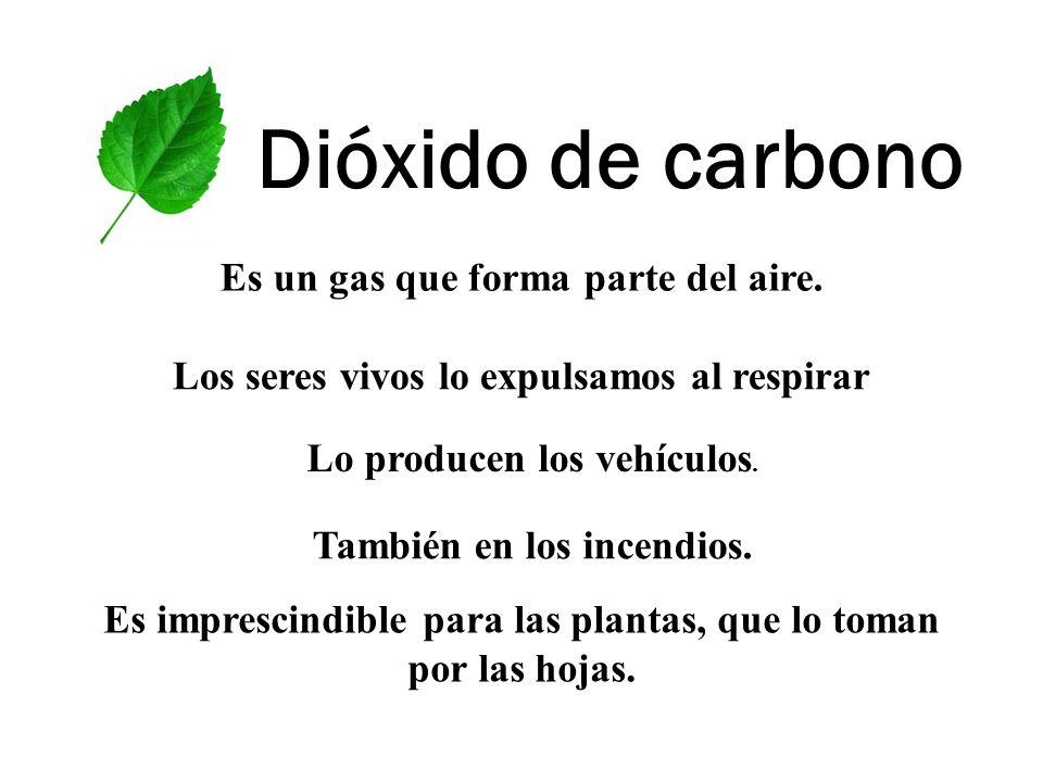 Dióxido de carbono Es un gas que forma parte del aire. Los seres vivos lo expulsamos al respirar Lo producen los vehículos. También en los incendios.