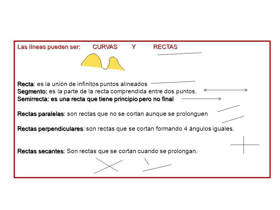 Las líneas pueden ser: CURVAS Y RECTAS Recta: es la unión de infinitos puntos alineados Segmento: es la parte de la recta comprendida entre dos puntos