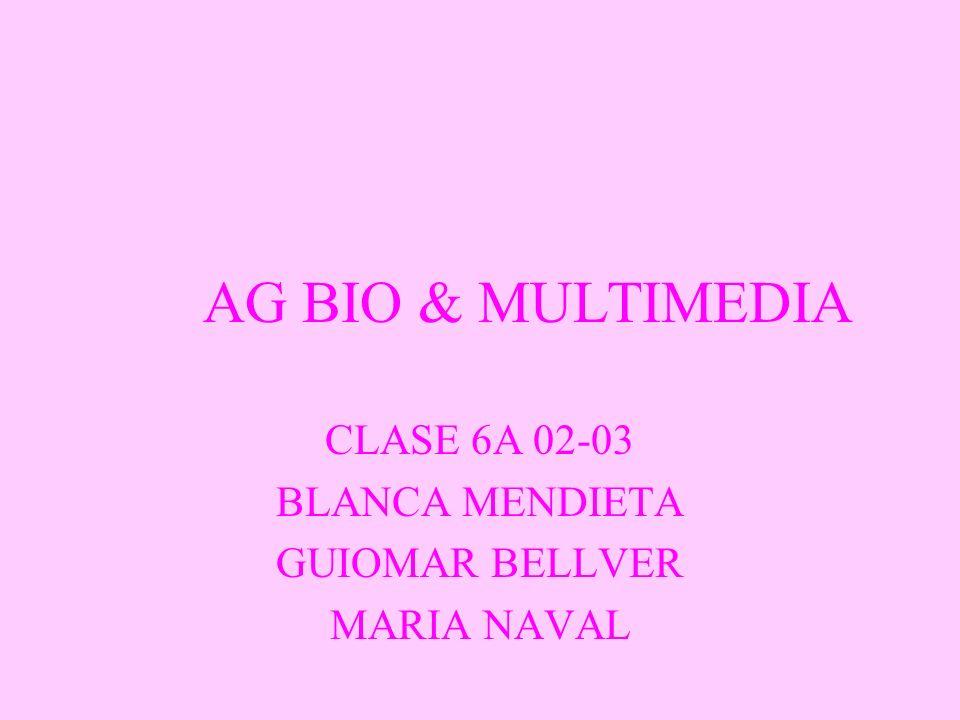 AG BIO & MULTIMEDIA CLASE 6A 02-03 BLANCA MENDIETA GUIOMAR BELLVER MARIA NAVAL